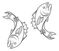 Stylised fish illustration an of forming a circle perhaps a tattoo Royalty Free Stock Image
