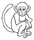 Stylised monkey illustration an of a perhaps a tattoo Stock Image