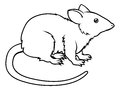 Stylised rat illustration an of a perhaps a tattoo Stock Photos