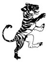 Stylised tiger illustration an of a perhaps a tattoo Stock Photos