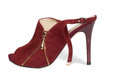 Stylish contemporary red ladies shoe Stock Images