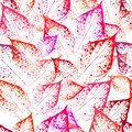 Seamless pattern of leaf prints on a white background