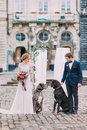 Stylish wedding couple with two purebred dogs in ancient european city center Stock Photo