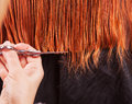 Stylist prepare woman hair in hairdresser salon Stock Image