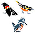 Stylized birds red winged blackbird baltimore oriole and belted kingfisher Royalty Free Stock Photos