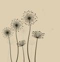 Stylized dandelions. Stock Image