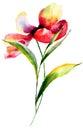 Stylized Flower Watercolor Ill...