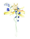 Stylized flowers watercolour illustration Royalty Free Stock Photo