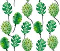 Watercolor pattern of monstera leaves and cacti