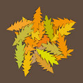 Stylized leaves (vector) Royalty Free Stock Photo