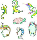 Stylized lizards and turtles set of color vector animal icons Royalty Free Stock Photo