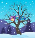Stylized owls on tree theme image 2 Royalty Free Stock Photo