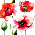 Stylized Poppy flowers illustration Royalty Free Stock Images