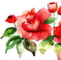 Stylized red roses flowers illustration Stock Photo