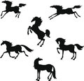 Stylized silhouette of horses in graceful hand drawing style Royalty Free Stock Image