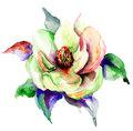 Stylized spring flowers watercolor illustration Stock Photography