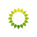 Stylized sun logo. Round icon of sun, flower. Isolated yellow green logo on white background. Frame.