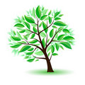 Stylized tree with green leaves. Stock Photography