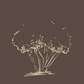 Stylized tree. Hand drawn. Beige tree sketch silhouette isolated on dark brown background.