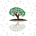 Stylized vector tree easy to design and decorate Royalty Free Stock Photos