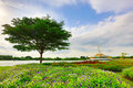 Suanluangrama green park in the city of bangkok in thailand Royalty Free Stock Photo
