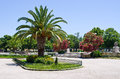 Suare in with palm greece old corfu town Royalty Free Stock Photos