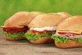 Sub Sandwiches Royalty Free Stock Photo