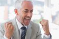 Succesful businessman cheering Royalty Free Stock Photo