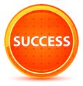 Success Natural Orange Round Button Royalty Free Stock Photo