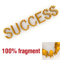 SUCCESS word mounted by tiny characters Stock Image