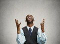 Successful business man celebrates victory Royalty Free Stock Photo