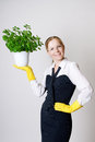 Successful business woman with a potted plant in the hands Stock Photos