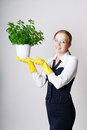 Successful business woman with a potted plant in the hands Royalty Free Stock Photos