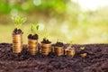 Successful savings Royalty Free Stock Photo