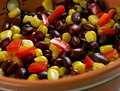 Succotash Royalty Free Stock Photo