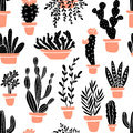Succulents and cacti plants. Vector seamless pattern with home garden cartoon cactus.