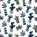 Succulents plants colorful seamless pattern, isolated on white