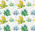 Succulents. Repeating pattern. Watercolor