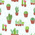 Succulents seamless background. Cactuses and succulents in terrariums geometric florariume. Seamless geometric modern