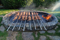 Suckling pig on a grill Royalty Free Stock Photo