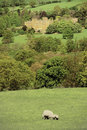 Sudeley castle Royalty Free Stock Image