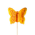 Sugar butterfly on a stick. Royalty Free Stock Photo