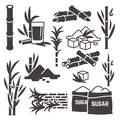 Sugar cane, sugarcane plant harvest vector silhouette icons isolated on white background