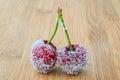Sugar cherries Royalty Free Stock Photo