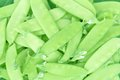 Sugar pea pods Royalty Free Stock Photo