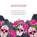 Sugar skull with pink roses template.