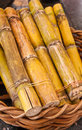 Sugarcane in basket Stock Photos
