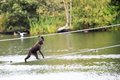 Sulawesi crested macaque moved across the pond oldest zoos in europe republic of ireland Stock Photos