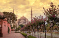 Sultan Ahmet Mosque (Blue Mosque),Istanbul - Turkey. Royalty Free Stock Photo