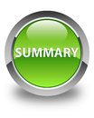 Summary glossy green round button